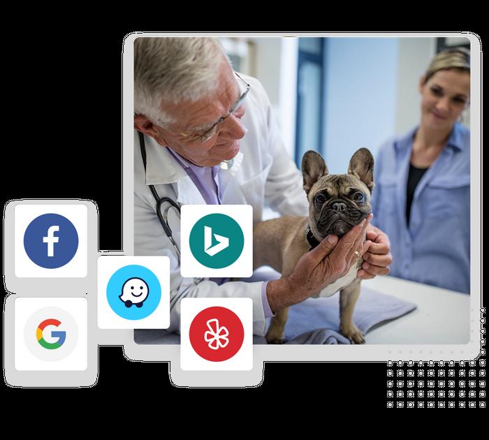 veterinarian local listings management