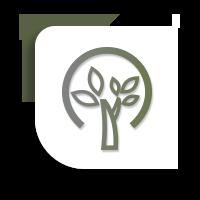 Organic & Sustainable