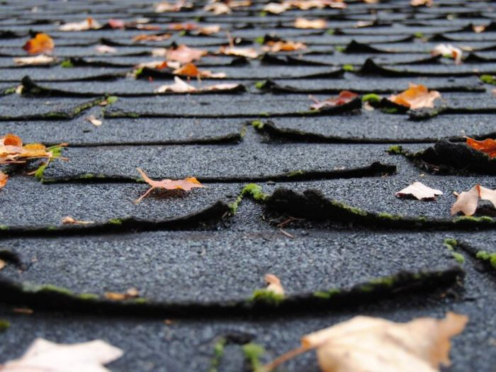 asphalt shingles peeling off and need roofing maintenance or new torch-on roof installation