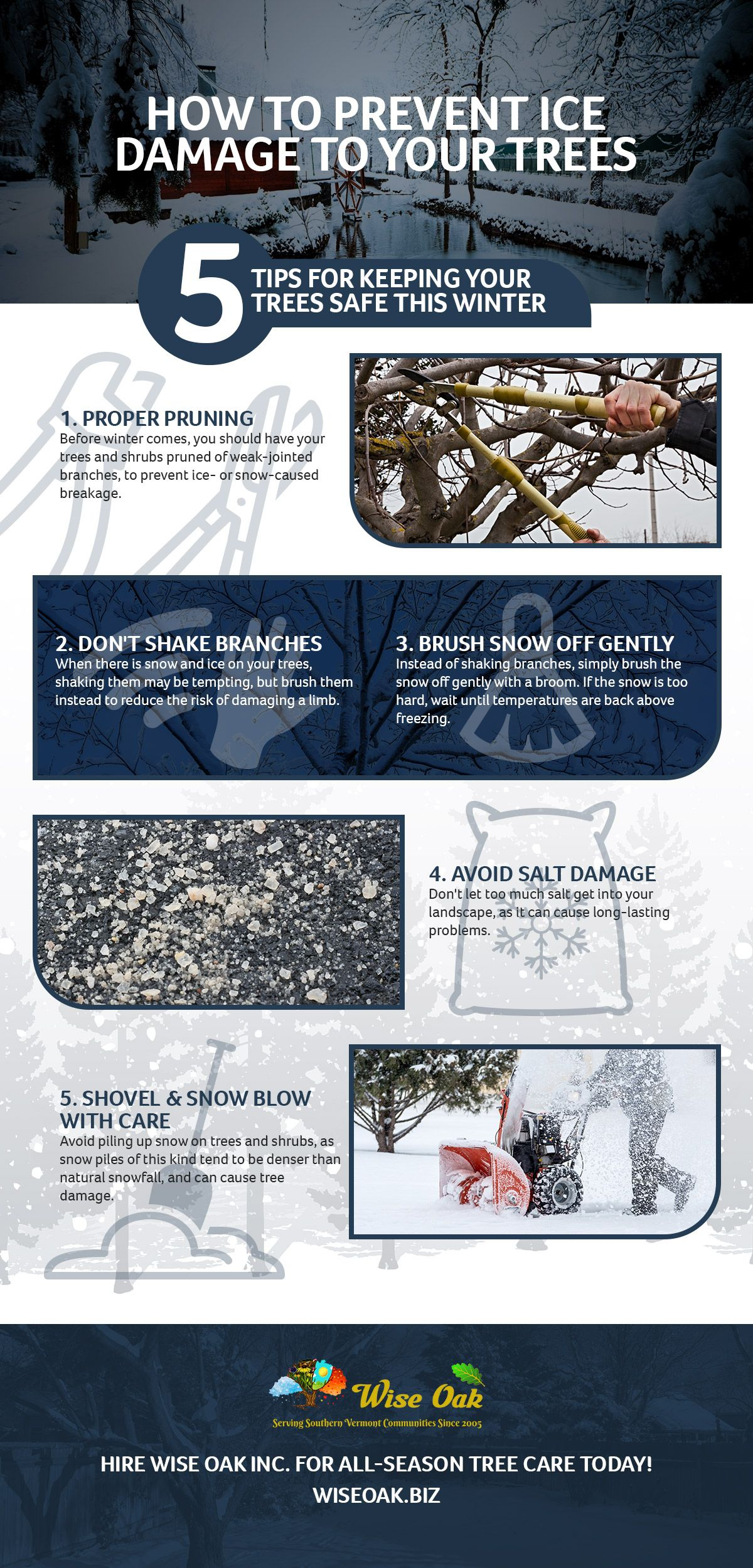 How to Prevent Ice Damage to Your Trees Infographic.jpg