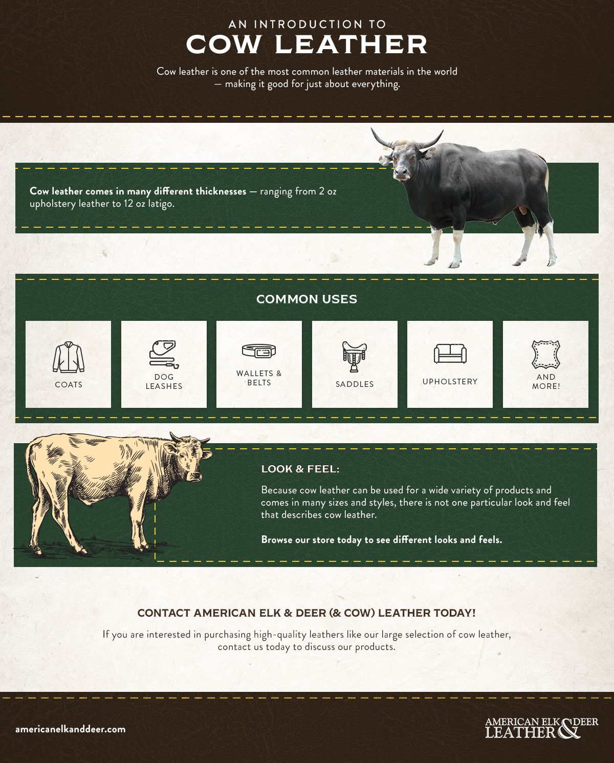 Cow Leather - Infographic.jpg