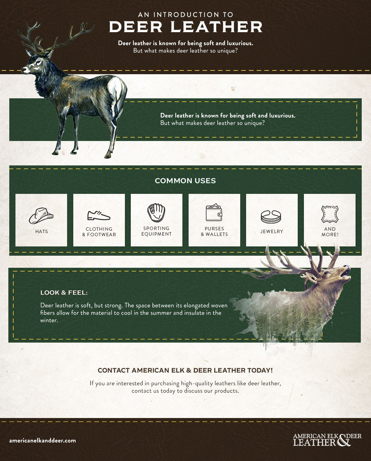 Deer Leather - Infographic.jpg
