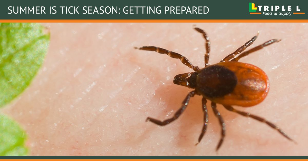 BB Summer Is Tick Season_ Getting Prepared.jpg