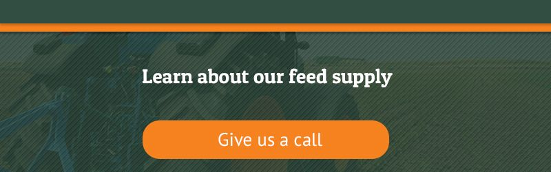 The-Importance-of-High-Quality-Livestock-Feed-CTA-5c89081c8d462.jpg