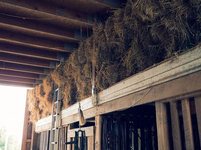 Hay high up in the barn