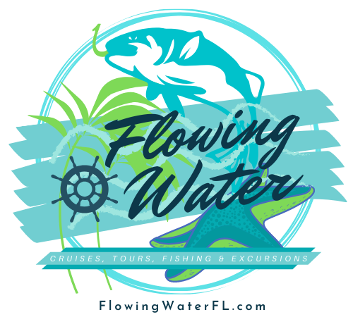 Flowing Water: Boat Cruises, Dolphin Tours, Fishing Charters and Coastal Excursions