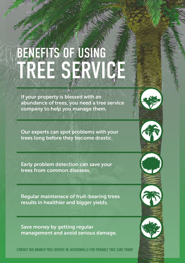 BenefitsOfTreeService_Infographic.jpg