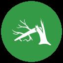 noun_Broken tree_607327.png