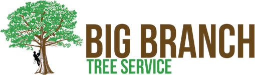 Big Branch Tree Service