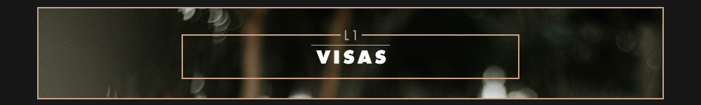 L-1-Visas-5cc0d69102857.png