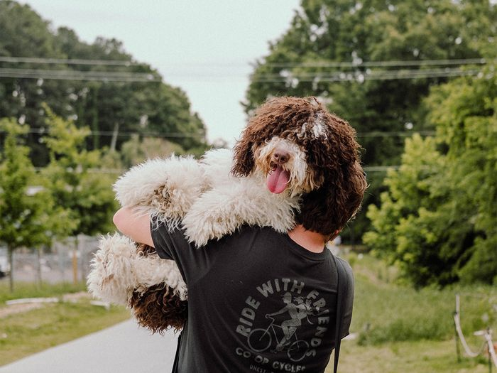 JM Kennels offers a 1-year genetic issue and 2-year hip and elbow guarantee