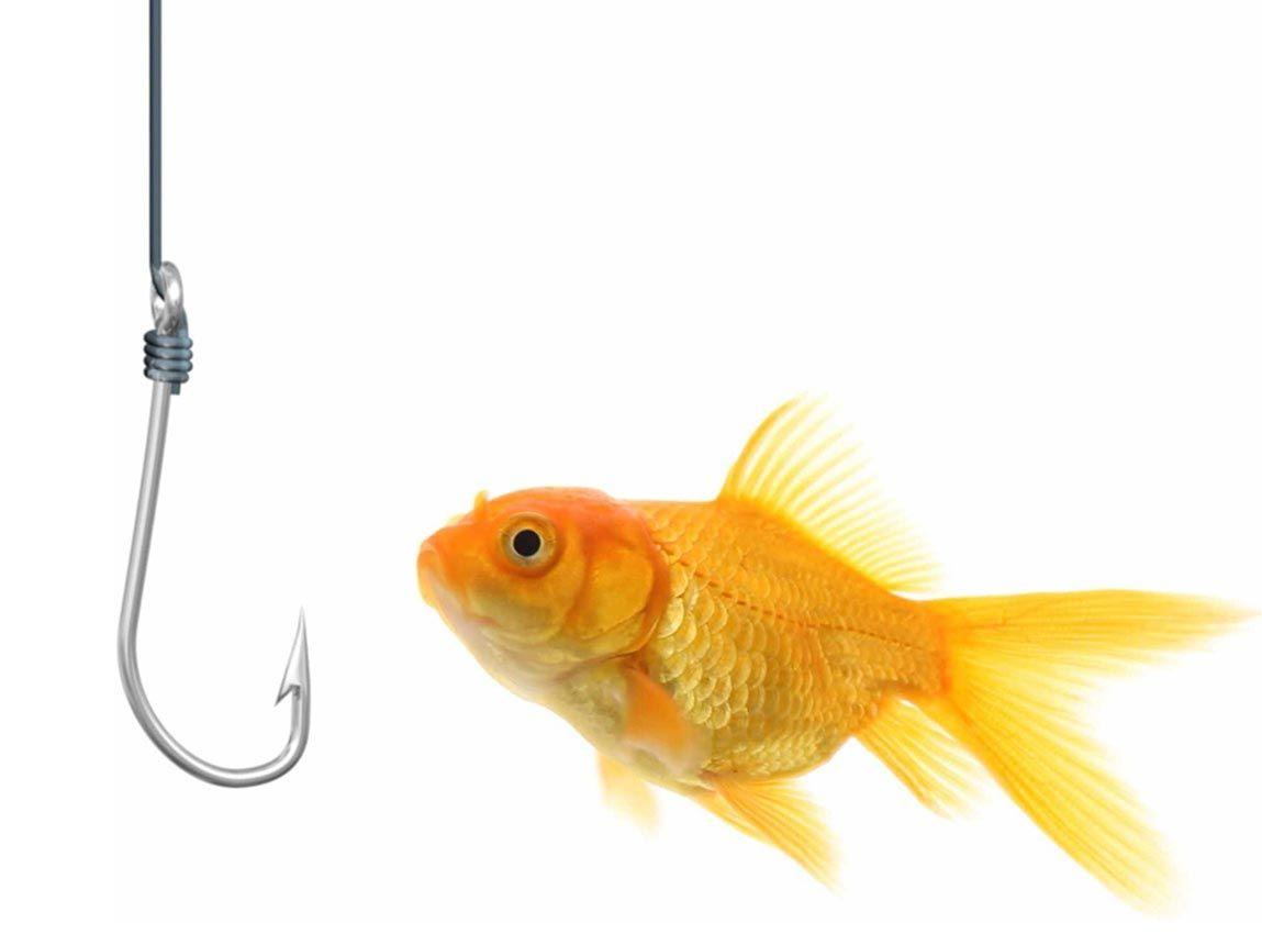 fishHook.jpg