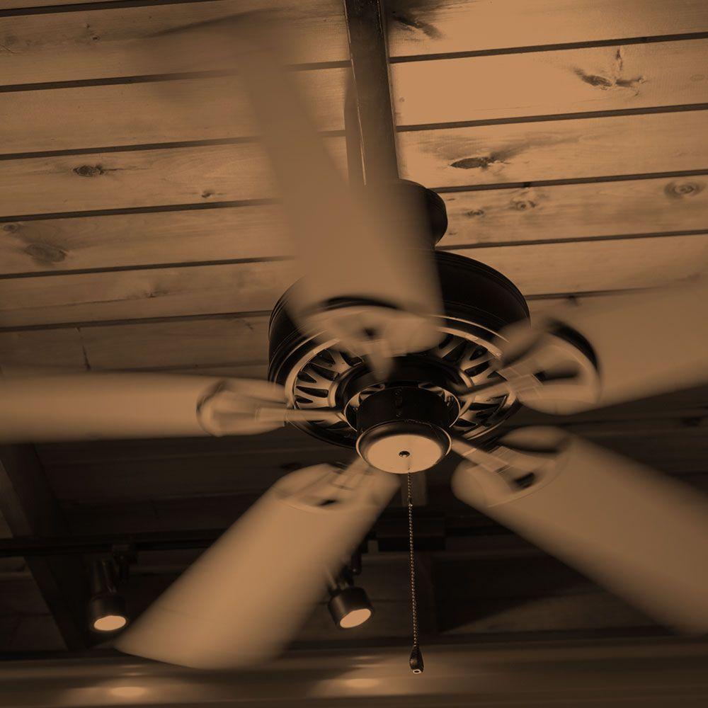 ceiling fan.jpg