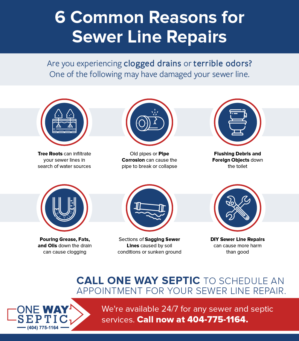 infographic of 6 Common Reasons for Sewer Line Repairs