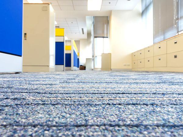 A close up of a building's clean carpets.