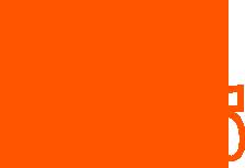 Hoop Dreams Logo Orange