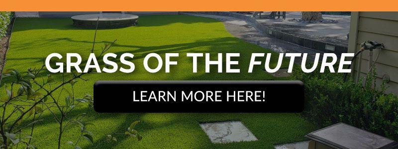 CTA-Grass-of-the-Future-5e73a3e6d2764.jpg