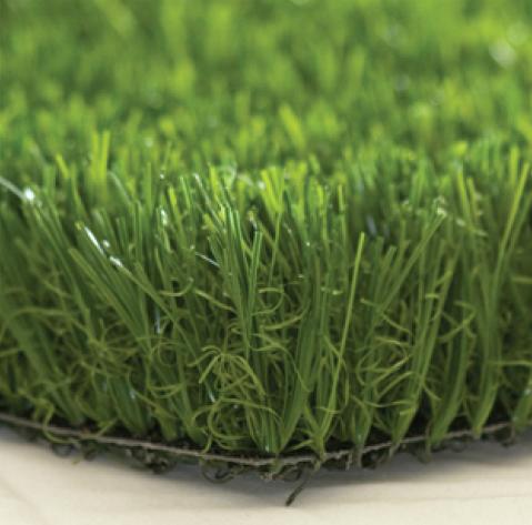 grass-5d7fb5a459368.png