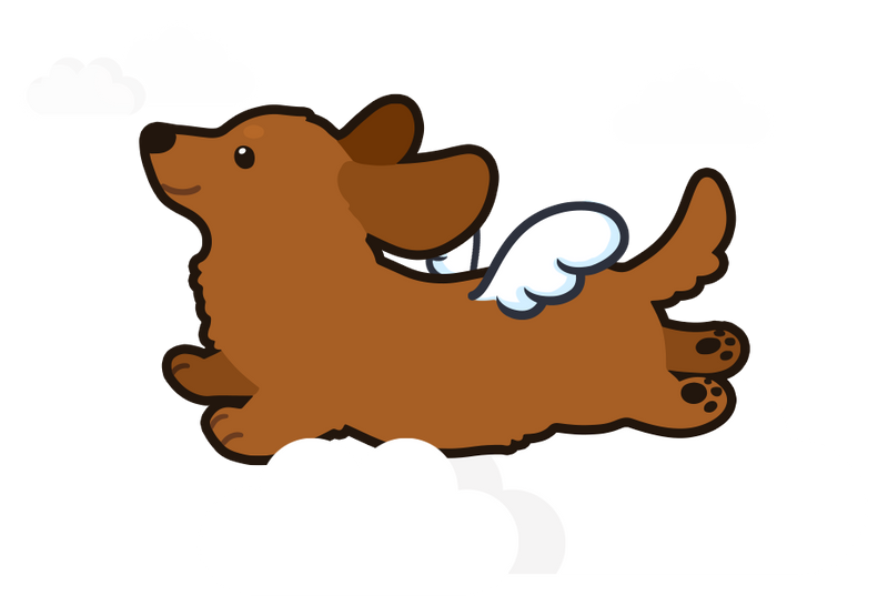 Graphic of puppy flying in the clouds