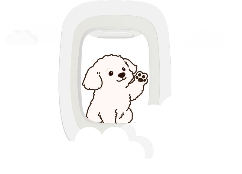 Graphic of puppy looking out plane window