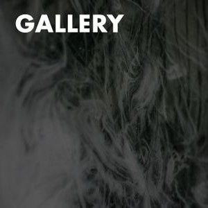 Gallery Button Bottom.jpg