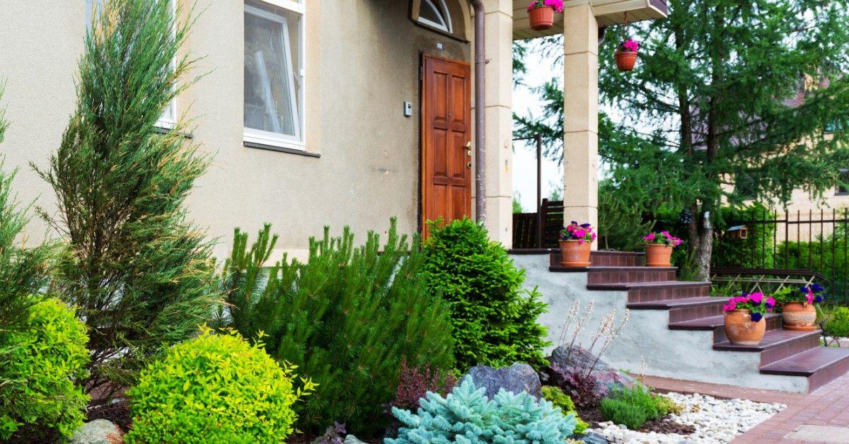 best-landscaping-blog-5e42d366a66bc.jpg