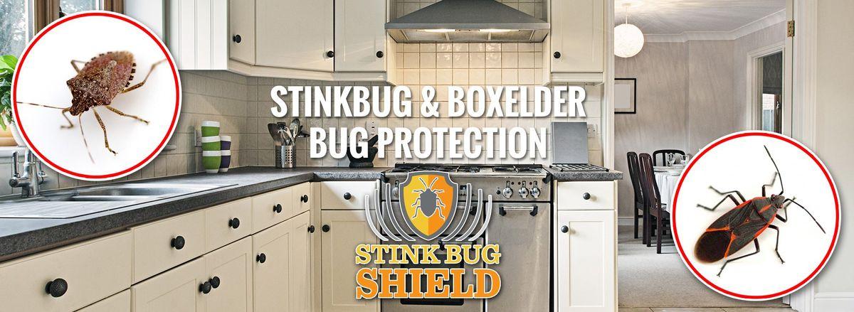 Sliders-Stink-Bug2-160912-57d719c690497-2000x732.jpg