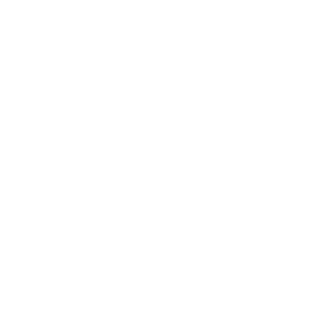 SafetyInspection-Badge-003.png
