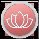 Icons - detoxify.png