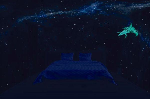 starship(1).jpg