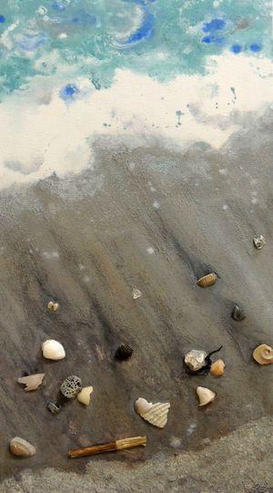 Cocoa-Beach-wShells2-min.jpg