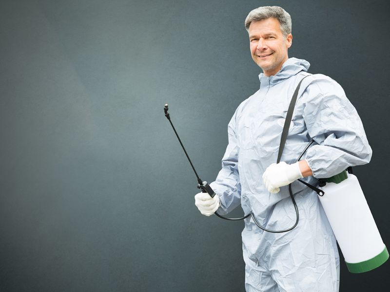 Pest Control Aspen Hill - Find Relief Today! I Pest Services Company - Pest  Services Company