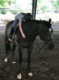 Image of girl riding Tucker the Horse