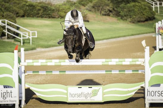 Image of horse jumping over obstacle