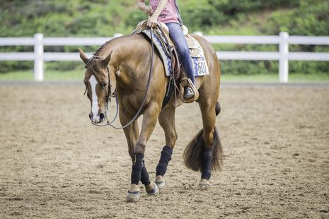 Image of girl riding horse