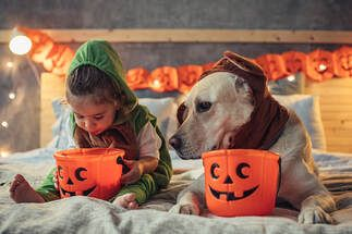 Image of little girl and dog with trick or treat baskets