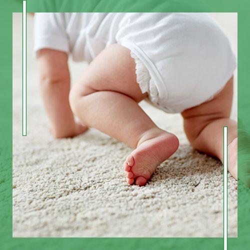 Carpet image 2.jpg