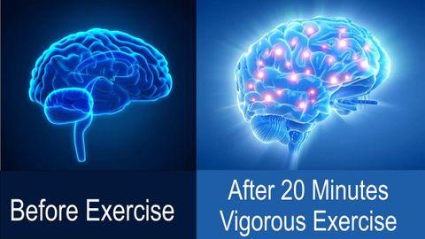 brainexercise.jpg
