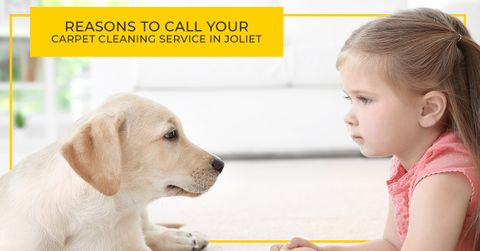 Reasons-to-Call-Your-Carpet-Cleaning-Service-in-Joliet-5c01b4d065d88.jpg