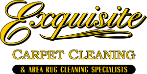 Exquisite Carpet Cleaning