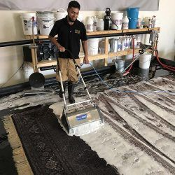 area-rug-cleaning-5bb3be273a9fe-250x250.jpg
