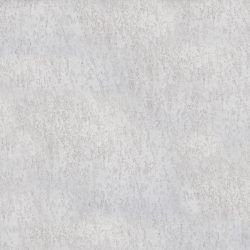 White-5dc055471c06c-250x250.jpg