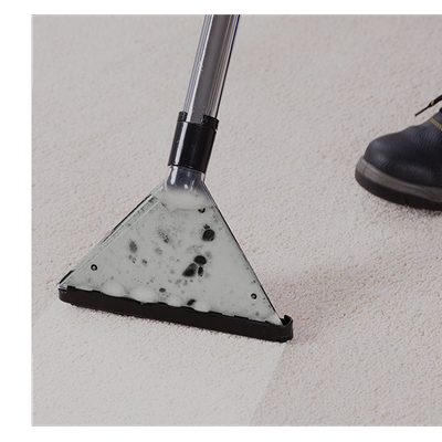 full-service-carpet-cleaning.png