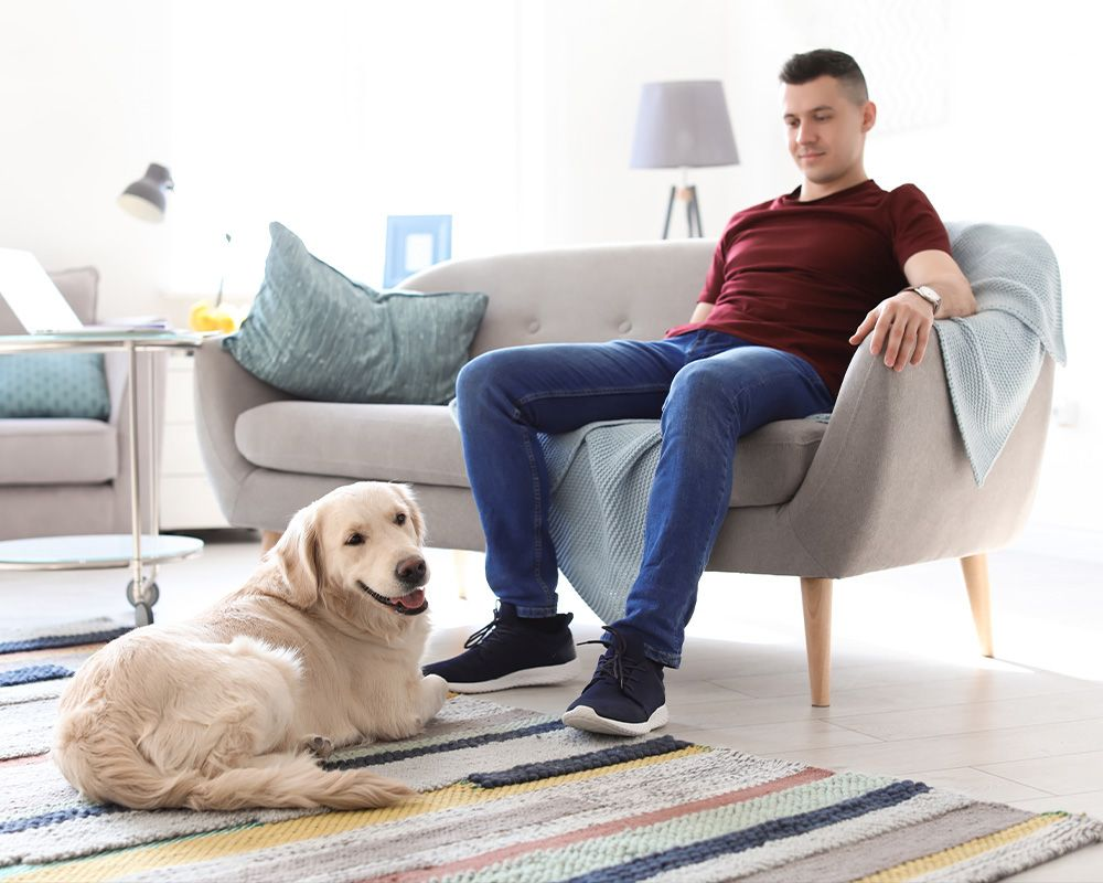 an image of a man and dog enjoying a clean home