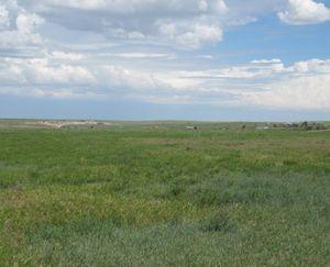 Vona-CO-132-Acre-Ranch_6-845x684-160928-57ebc25a1aa99.jpg
