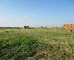 Keenesburg-CO-143-Acres-Irrigated-Farm_11-845x684-160923-57e5454954aa1.jpg