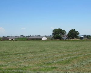 Ault-CO-138-Acres-Irrigated-Farm_6-845x684-160926-57e930e74c114.jpg