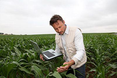 agronomy-services-2-160913-57d86f547ef9f.jpg