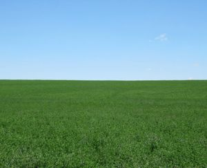 Ault-CO-138-Acres-Irrigated-Farm_3-845x684-160926-57e930de7be90.jpg