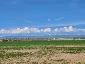 4 acres Pic 2-2.jpg